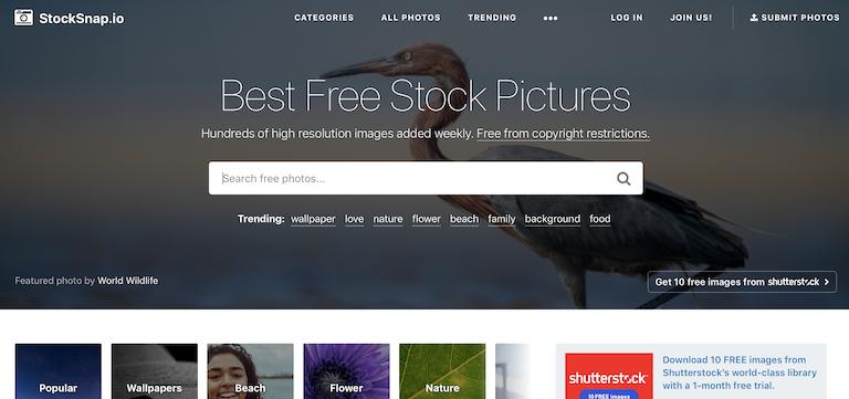 stocksnap photos gratuite